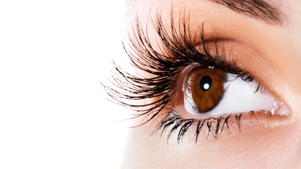 eyelashes tutorial