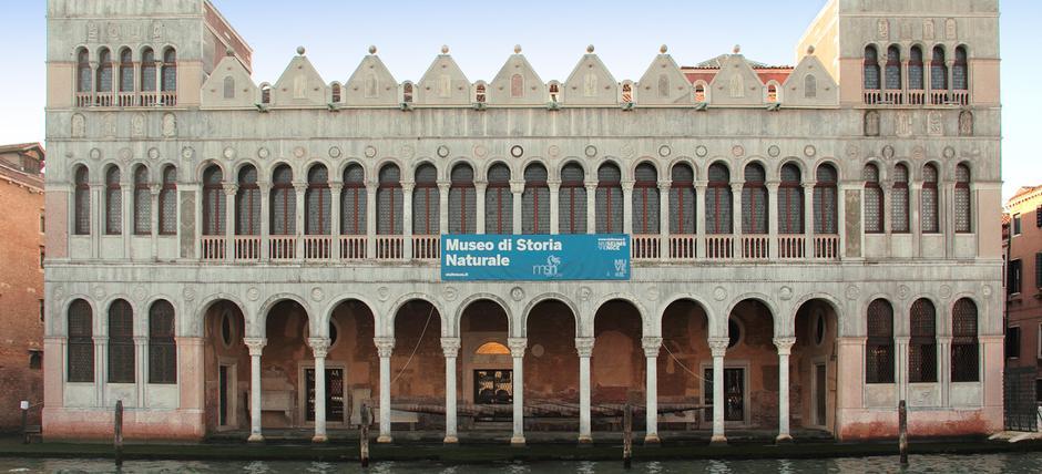 Building Italy natural history
