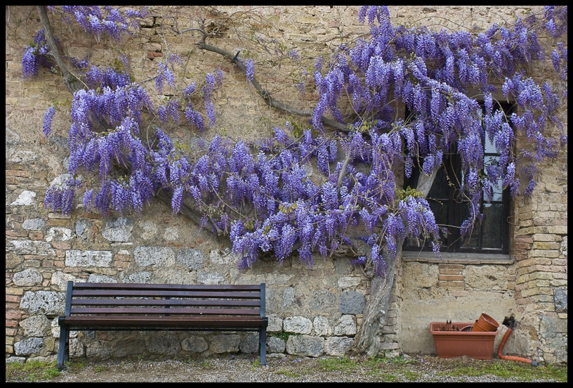 An Italian Garden Design Life In Italy