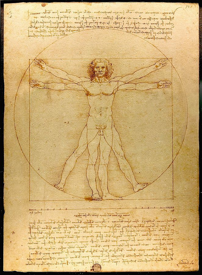 The Vitruvian Man by Leonardo da Vinci.