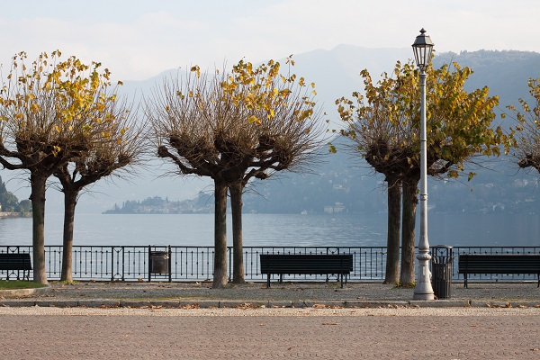 Rest by Lake Como