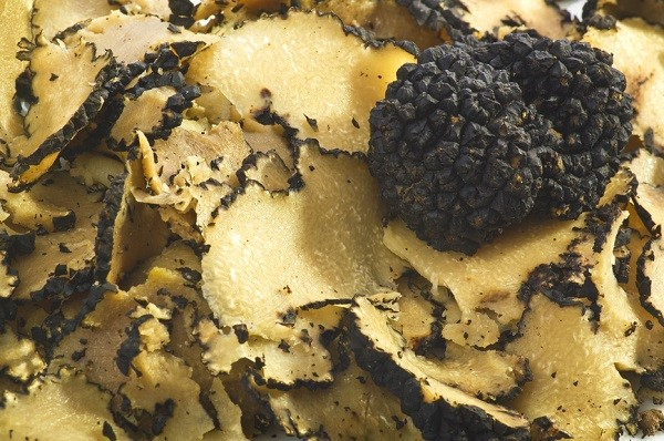 Umbria is the leading producer of Truffle in Italy