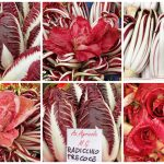 Radicchio, a favorite of the Fall