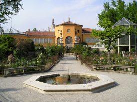 Botanical Garden, Padua