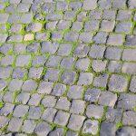 Sampietrini: Rome's Pavement