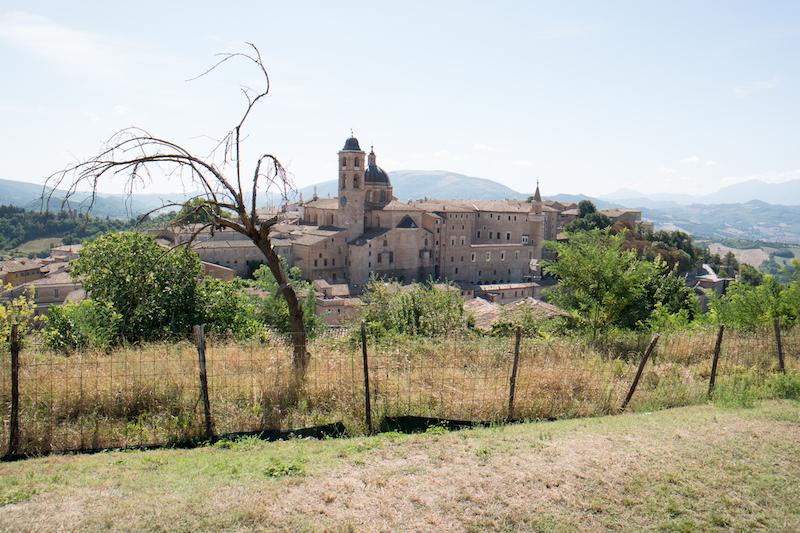Northern Marche Montefeltro