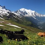 Mont Blanc: Itineraries for All, part Two