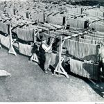 pasta history