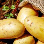 Venetian Mustard Potatoes