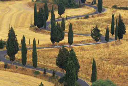winding tuscan road