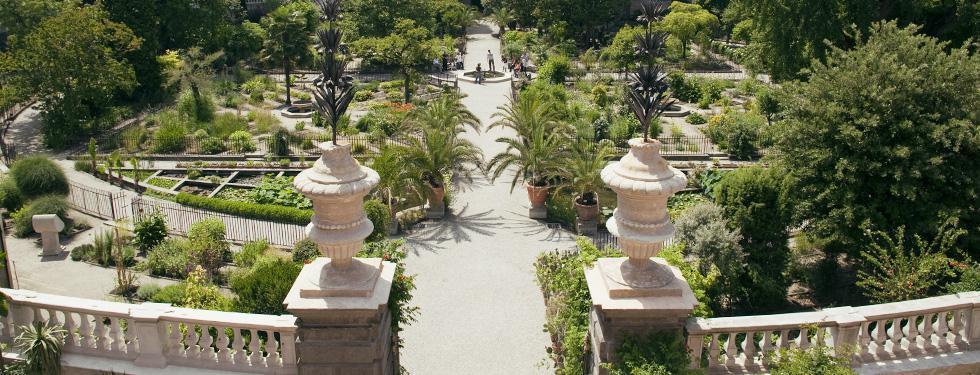 Padua botanical garden university veneto