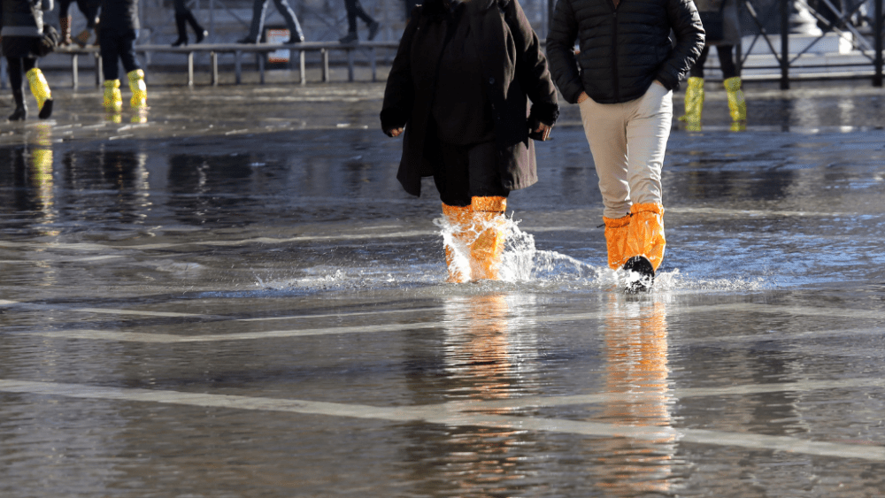 hight tide venice people boots