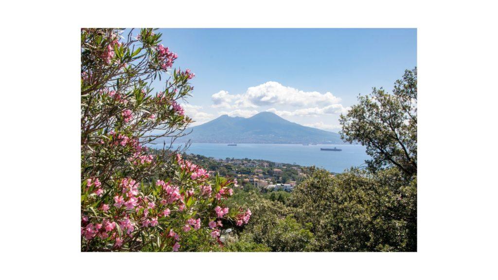 Parco Nazionale del Vesuvio, Vesuvio